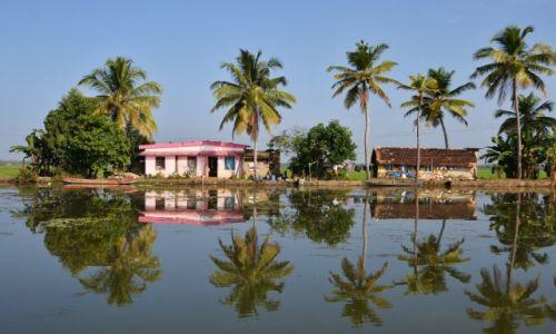Zdjecie INDIE / Kerala / Alappuzha / Sąsiedzi