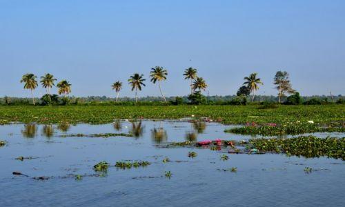 Zdjecie INDIE / Kerala / Alappuzha / Kerala Backwaters
