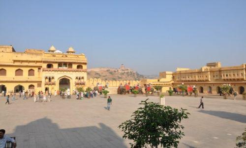 Zdjęcie INDIE / Jaipur / Fort Amber / słonie
