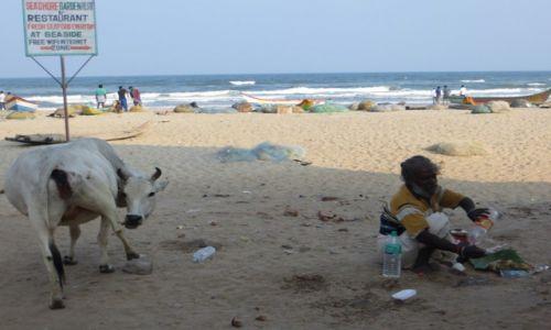 Zdjęcie INDIE / Tamil Nadu / na plaży / przepraszam, ja tu tylko na chwilkę