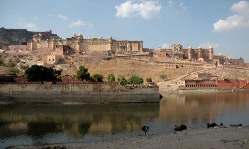 Zdjęcie INDIE / Rajastan / Amber / fort Amber
