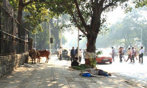 Zdjęcie INDIE / Maharasztra / Bombaj / Bombaj