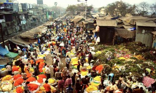 Zdjęcie INDIE / Bengal / Kalkuta / Targ kwiatowy