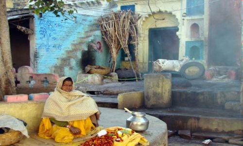 Zdj�cie INDIE / Madhya Pradesh / Orchha / Piec, koza i kobieta...
