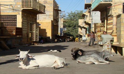 Zdjęcie INDIE / Radżastan / Jaisalmer / Ulica