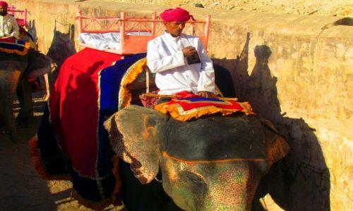 Zdjecie INDIE / Rad�astan / Jaipur / S�onie w Amber