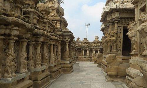 Zdjęcie INDIE / Tamil Nadu / Kanchipuram / Świątynia Kajlasanatha