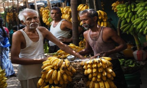 Zdjecie INDIE / Tamil Nadu / Madurai / Targ bananów