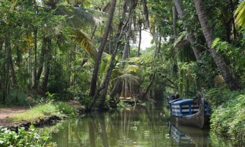 Zdjecie INDIE / Kerala / Alappuzha / Do dżungli
