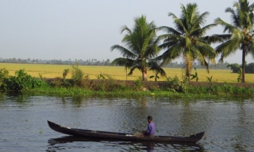 Zdjęcie INDIE / Kerala / okolice Allepey / rozlewiska Kerali