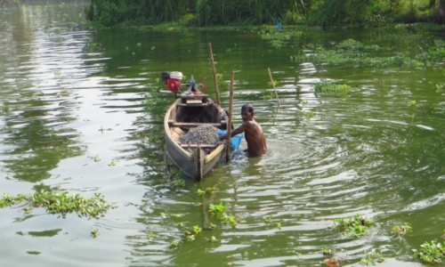 Zdjecie INDIE / Kerala / okolice Allepey / połów małży