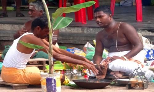 Zdjecie INDIE / Indie Południowe / Trichy, ghaty nad Kaweri / ŚLUB Z PALMĄ! udzielany przez bramina