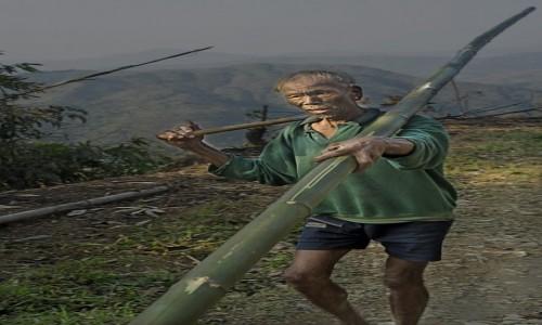 Zdjecie INDIE / Naga / Mon / wojownik Konyak