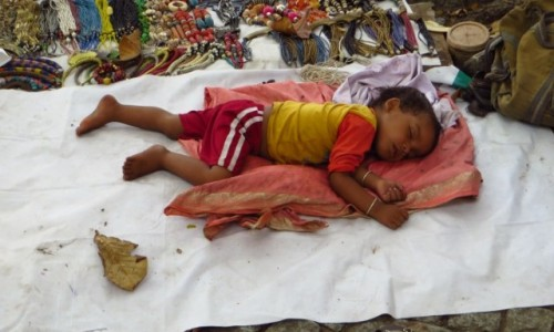 Zdjęcie INDIE / Kerala / Cochin / siesta
