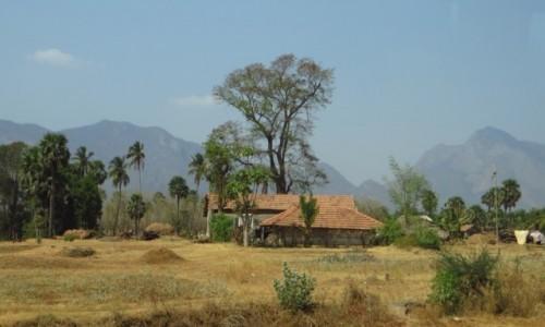 Zdjęcie INDIE / Kerala / gdzieś na trasie / obrazek z Kerali