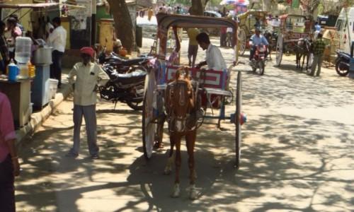 Zdjęcie INDIE / Karnataka / Mysore / na ulicy