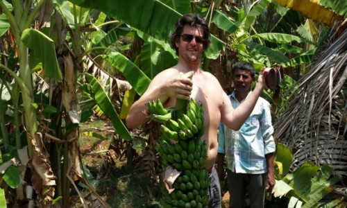 Zdjęcie INDIE / Karnataka / Bengalore / podróż na kokosach
