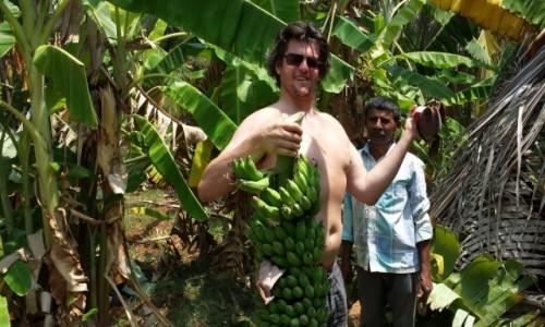 Zdjecie INDIE / Karnataka / Bengalore / podróż na kokosach