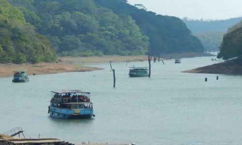 Zdjecie INDIE / Kerala / Thekkady / Indie Po�udniow