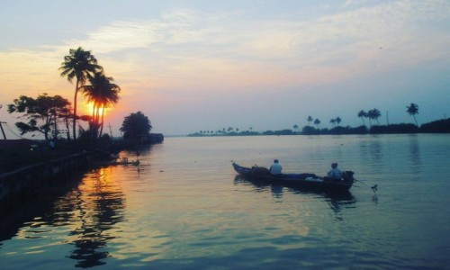 INDIE / Kerala / Alleppey  / Kerala backwaters