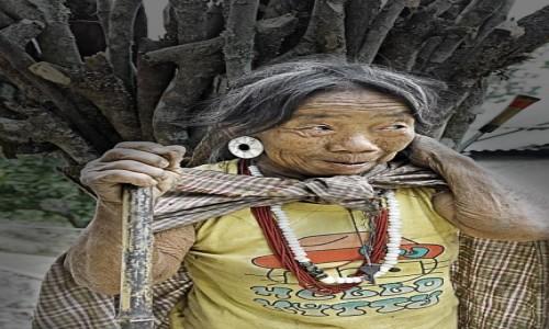 Zdj�cie INDIE / Arunachal Pradesh / Dolina Ziro / Kobieta nios�ca chrust