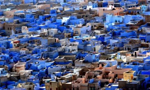 Zdjecie INDIE / Rajastan / Dżodhpur / Niebieskie mias