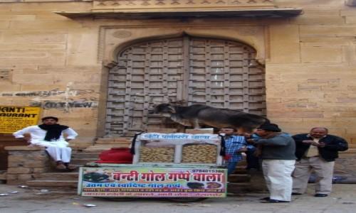 INDIE / Radżastan / Jaisalmer / Jak to w Indiach