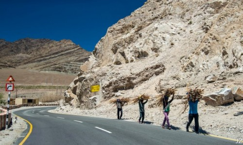 Zdjecie INDIE / Ladakh / Ladakh / Lokalny transport