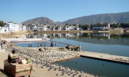 Zdjęcie INDIE / Radżastan / Pushkar / Po prostu Indie :)