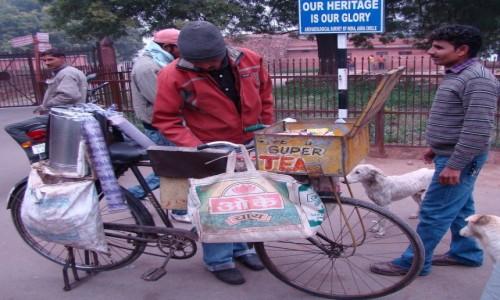 Zdjecie INDIE / Uttar Pradesh / Fatehpur Sikri / Mobilna herbaci