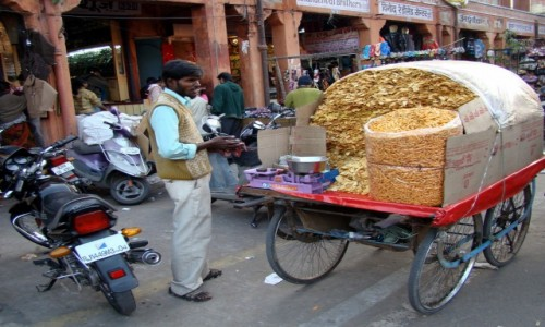 INDIE / Rad�astan / Jaipur / Chipsikowo