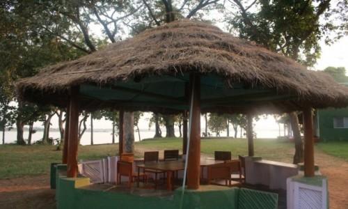 Zdjęcie INDIE / Madhya Pradesh / Satpura / Dach