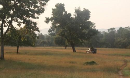 Zdjecie INDIE / Madhya Pradesh / Satpura / jeep w oddali