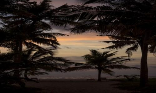 Zdjecie INDIE / Kerala / plaża Mararikulam / plaża Mararikul