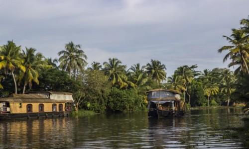 Zdjecie INDIE / Kerala / Aleppey / Kerala backwate