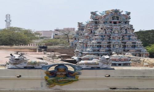 INDIE / Tamilnadu / Madurai / Świątynia Minakszi w Maduraju