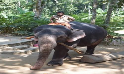 INDIE / Kerala / Kumily / Kumily 2