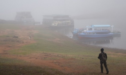 Zdjęcie INDIE / Kerala / Periyar National Park / Periyar National Park 1