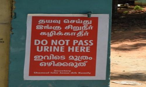 INDIE / Kerala / Kumily / znak