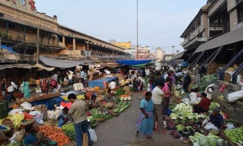 Zdjęcie INDIE / Karnataka / Bangalore / Bangalore Fruit Market 2