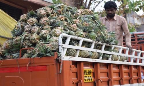 Zdjęcie INDIE / Karnataka / Bangalore / Bangalore Fruit Market 5