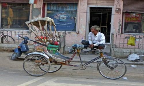 Zdjęcie INDIE / - / Khajuraho / W oczekiwaniu