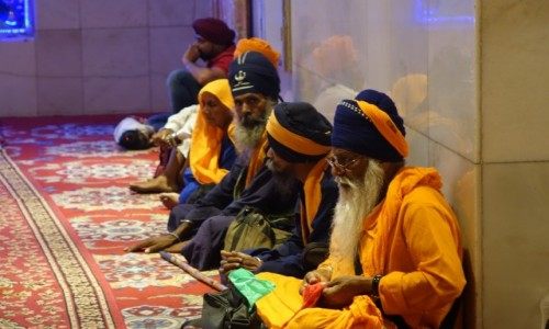 INDIE / Delhi / Delhi / Świątynia  Sikchów
