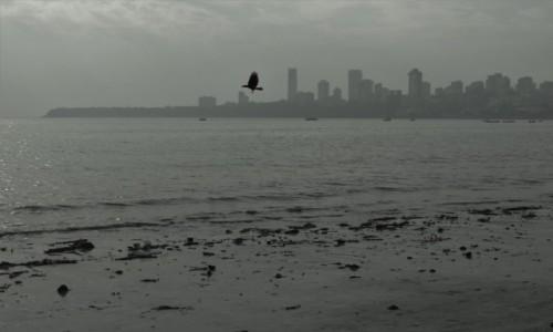 Zdjęcie INDIE / Maharasztra / Mumbaj / dzień się kończy