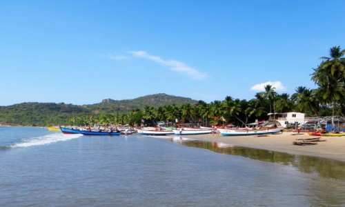 Zdjęcie INDIE / Goa / Palolem / z palmami