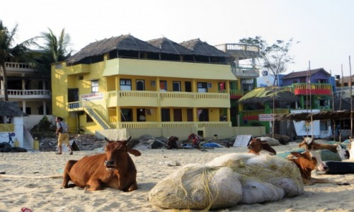 Zdjęcie INDIE / Tamilnadu / Mamallapuram / hotel na plaży