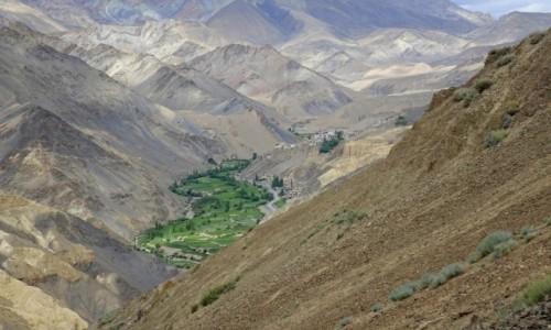 Zdjecie INDIE / Lamajuru / lamajuru / dolina
