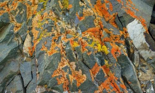 Zdjęcie INDIE / Lamajuru / Lamajuru / Kolor ziemi