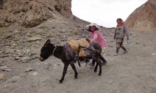 INDIE / Ladakh /    / Himalaje