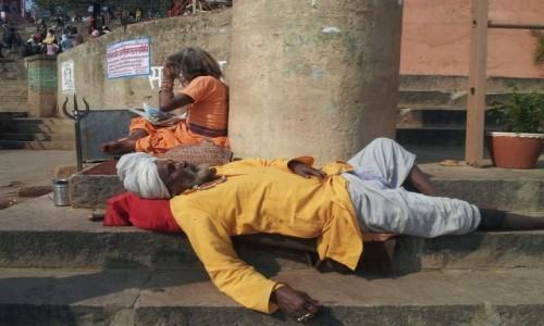 Zdjecie INDIE / - / Varanasi / Shadu ma wolne :)